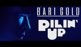 Embedded thumbnail for Pilin' Up By Bari Gold